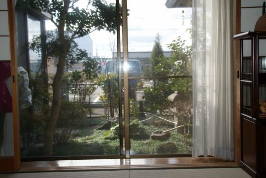 庭志から庭師へ-久御山町Yさんの庭 befor