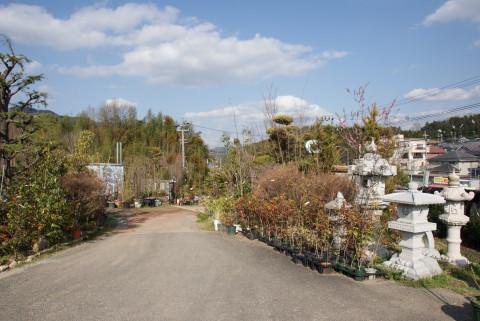 庭志から庭師へ-syoukai02
