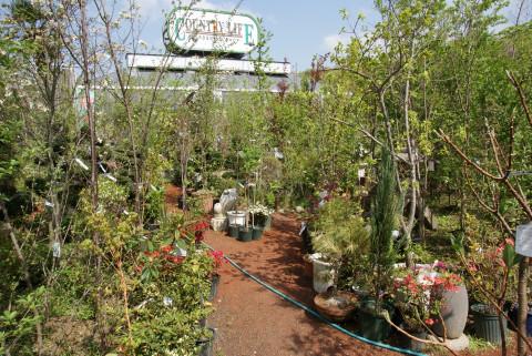 庭志から庭師へ-syoukai03