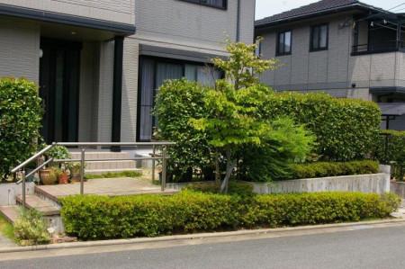 庭志から庭師へ-miyake01