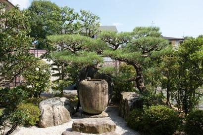 庭志から庭師へ-matsuda4